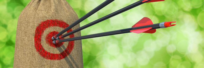 Development - Three Arrows Hit in Red Target on a Hanging Sack on Green Bokeh Background.